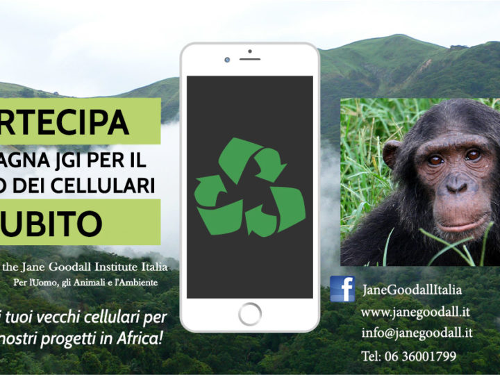 Campagna per il Riciclo dei Cellulari