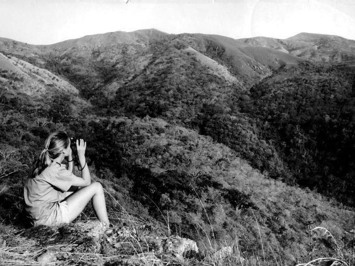 """Jane Goodall: le sue considerazioni sul film """"JANE"""""""