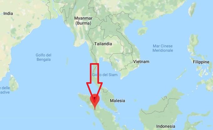 Scoperta una nuova specie di orango in Indonesia: l'Orango di Tapanuli