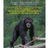 Al Parco Safari Ravenna: I Nostri Scimpanzé – storie di recupero, salvaguardia e contributo alla conservazione