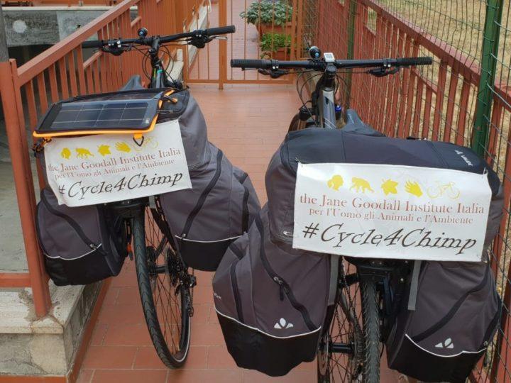 Campagna Riciclo Cellulari: #cycle4chimp iniziativa estiva