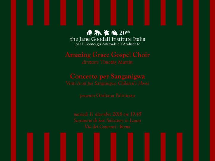 Concerto straordinario per Sanganigwa a chiusura del nostro Ventennale