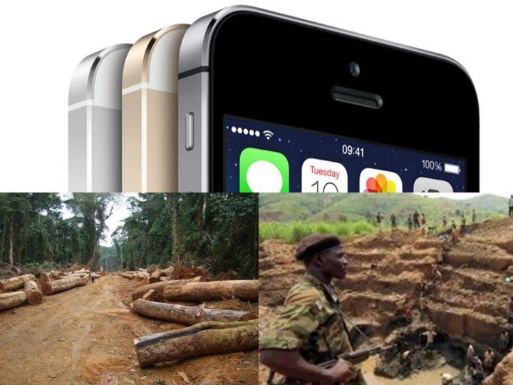 Quale connessione tra smartphone, ambiente e scimpanzé?