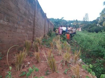 Sanganigwa: stop all'erosione del suolo lungo il muro di cinta