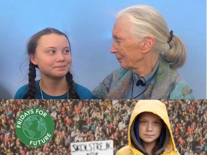 Jane Goodall e Roots & Shoots con i giovani per il Global Strike for Future