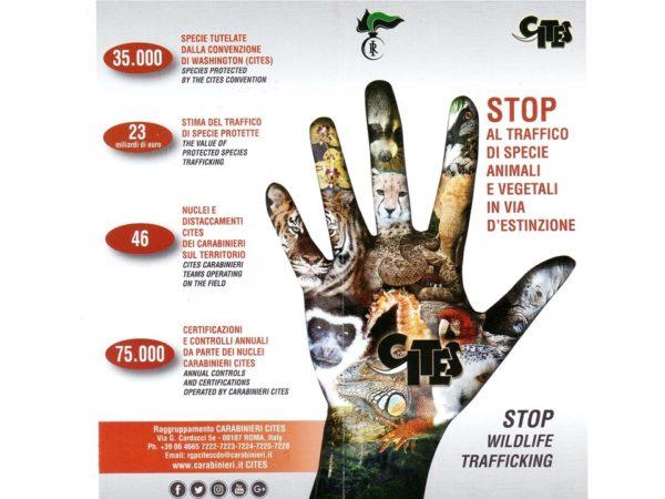 40 anni CITES – Contro la deforestazione: partecipazione, comunicazione, contrasto