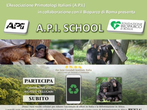 La Campagna Cellulari con l'Associazione Primatologi Italiani e il Bioparco di Roma