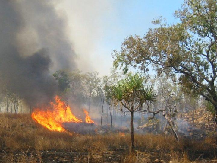 L'Australia brucia. Quale prezzo a causa dell'inerzia del Governo?