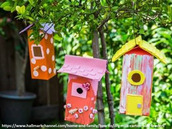 Dedicati agli uccellini: costruisci per loro una casetta o una mangiatoia