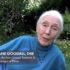 Jane Goodall per la Giornata Mondiale dell'Ambiente 2020