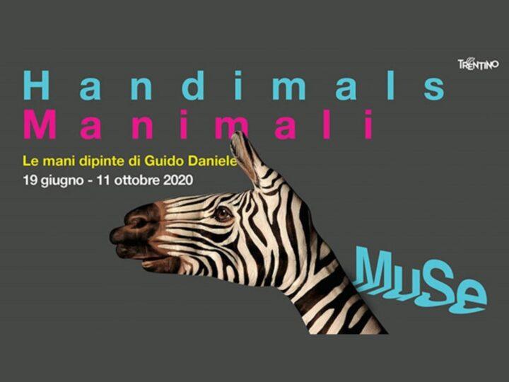 Manimali – Le mani dipinte: in chiusura la mostra di Guido Daniele dedicata a Jane Goodall, tutta da visitare!