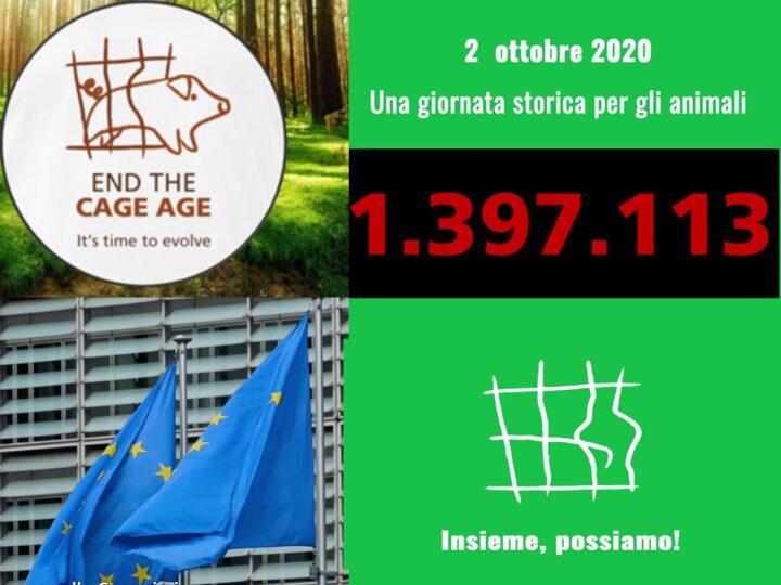 No alle gabbie negli allevamenti: consegnate alla Commissione Europea un milione 400mila firme – Grazie