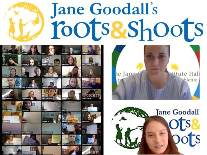 I giovani di Roots&Shoots non si fermano: European Virtual Roots & Shoots Meeting 2020