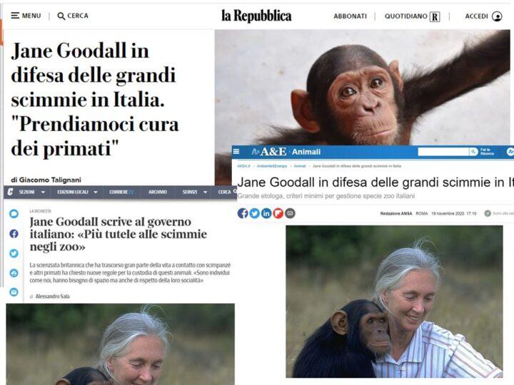 La proposta del JGI Italia sulla stampa nazionale