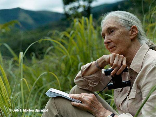 Jane Goodall: pensare fuori dagli schemi e non perdere mai la concentrazione o la speranza