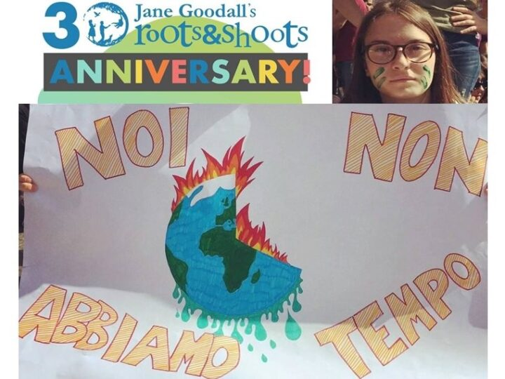 Roots & Shoots compie 30 anni: la celebrazione online