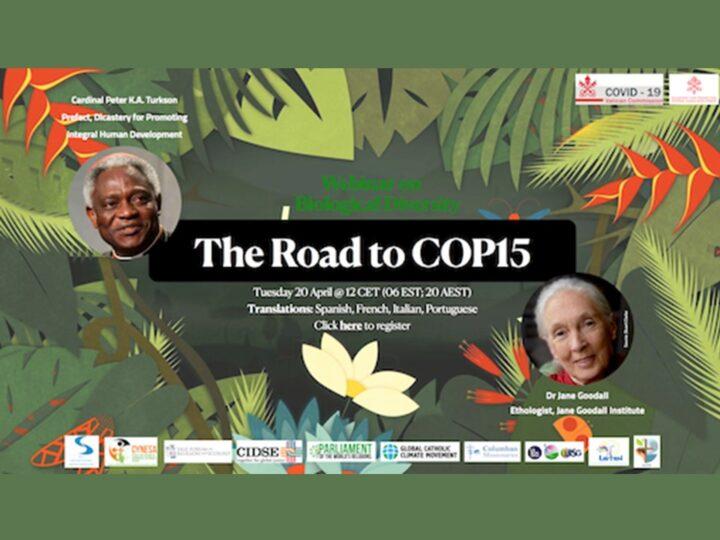 Webinar con Jane Goodall e Cardinale Peter Turkson sulla diversità biologica