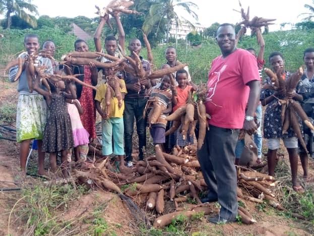 Eccezionale raccolto di manioca bio a Sanganigwa: una festa