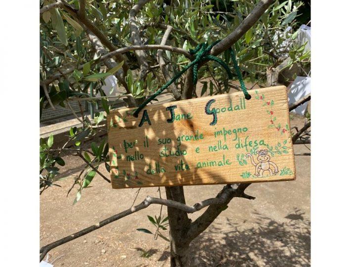 """Scuola elementare San Nilo per l'obiettivo 15 dell'Agenda 2030: """"Vita sulla Terra"""""""