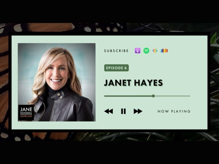 Jane Podcast 6: Jane parla con Janet Hayes