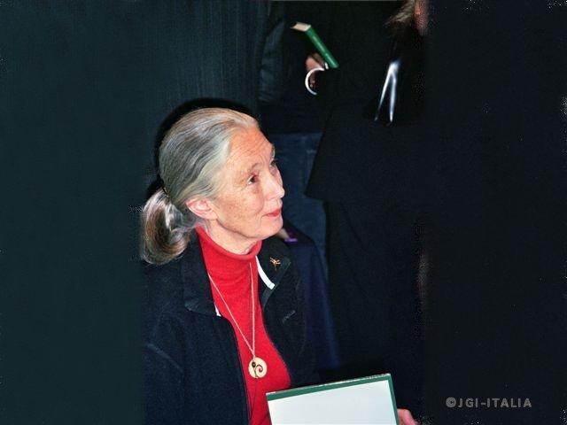 Jane Goodall nominata Portavoce COP26