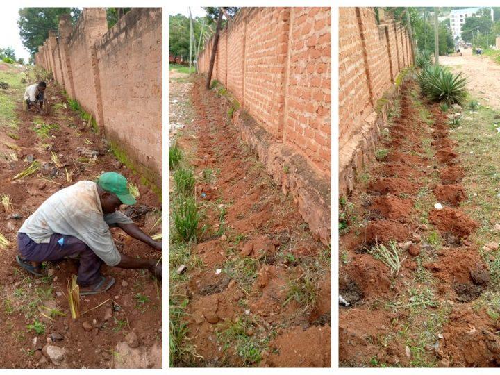A Sanganigwa contro l'erosione una lotta continua